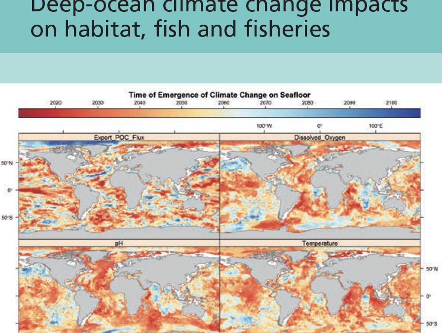 Contribution to report: Deep-ocean climate change impacts on habitat, fish and fisheries