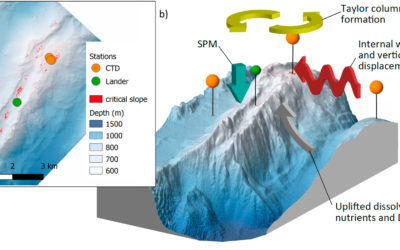 Long‐term Observations Reveal Environmental Conditions and Food Supply Mechanisms at an Arctic Deep‐Sea Sponge Ground