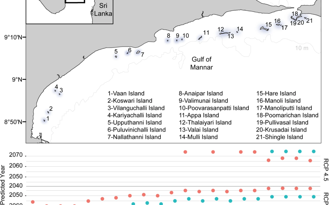 Coral reef resilience differs among islands within the Gulf of Mannar, southeast India, following successive coral bleaching events
