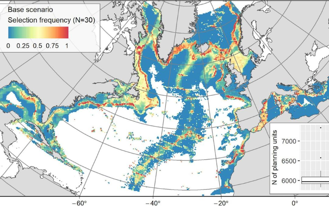 Systematic Conservation Planning at an Ocean Basin Scale: Identifying a Viable Network of Deep-Sea Protected Areas in the North Atlantic and the Mediterranean